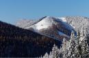Schneeschuhtour von der Teichalm zur Tyrnauer Alm