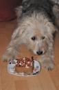 13. Geburtstag von Ghini